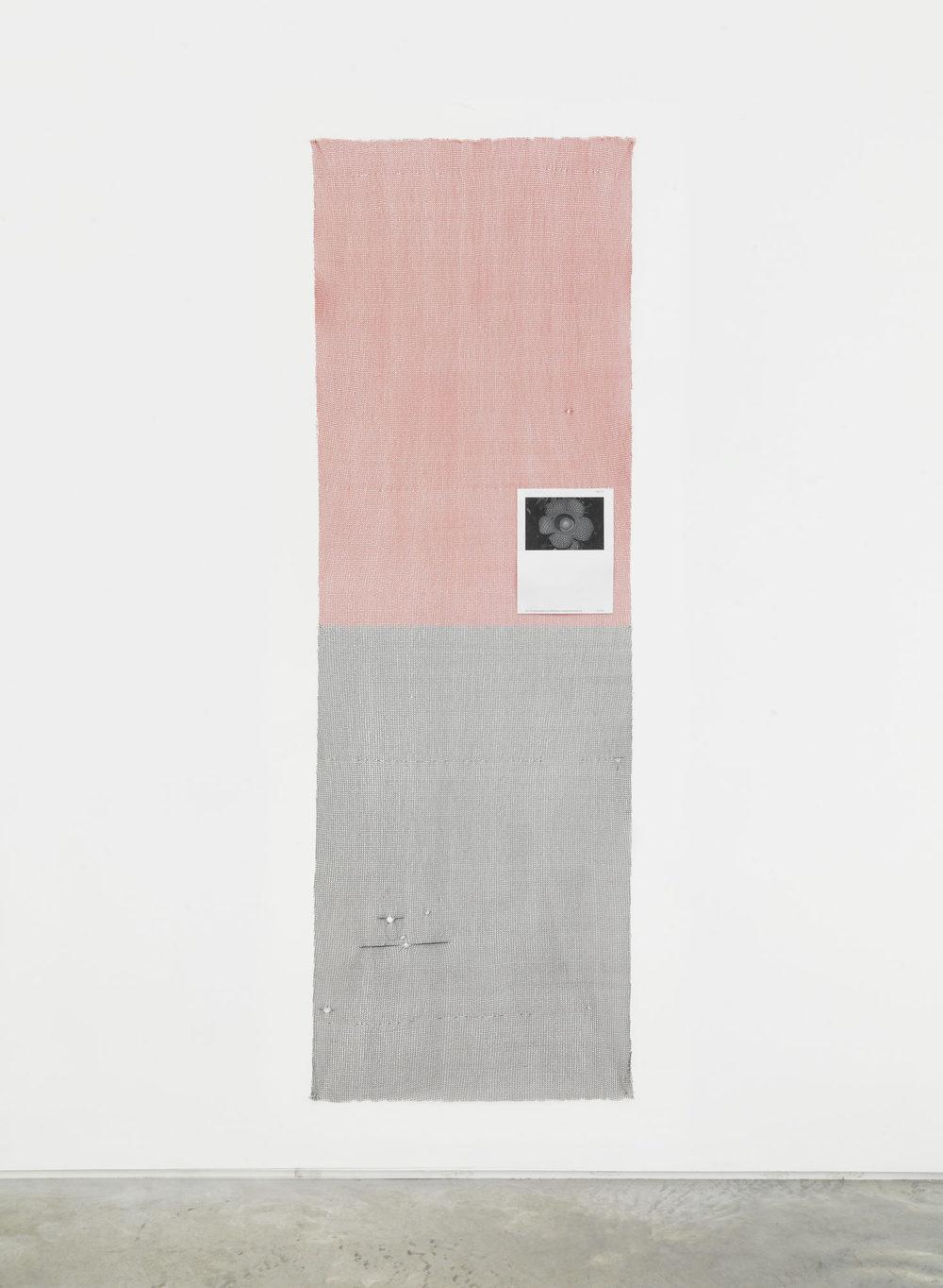 Putrid Flower (Sandinistas), 2015,Custom machine knit polyester, polyurethane, Xerox print