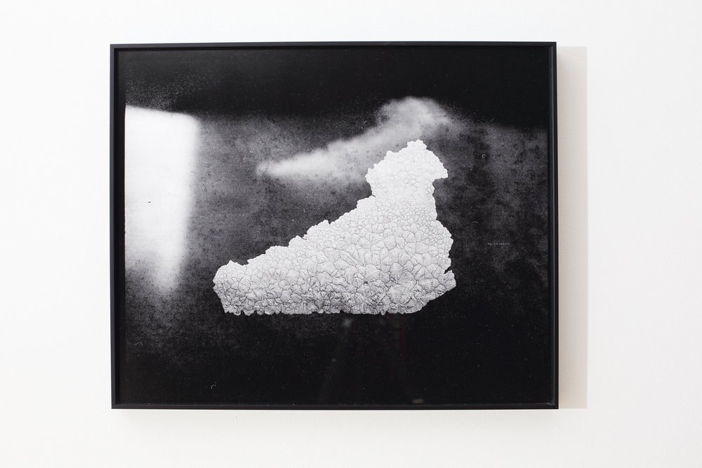 Julie Escoffier ,  Mishap_4 Rice Water Overflow , 2016, medium-format film printed on silk Baryta