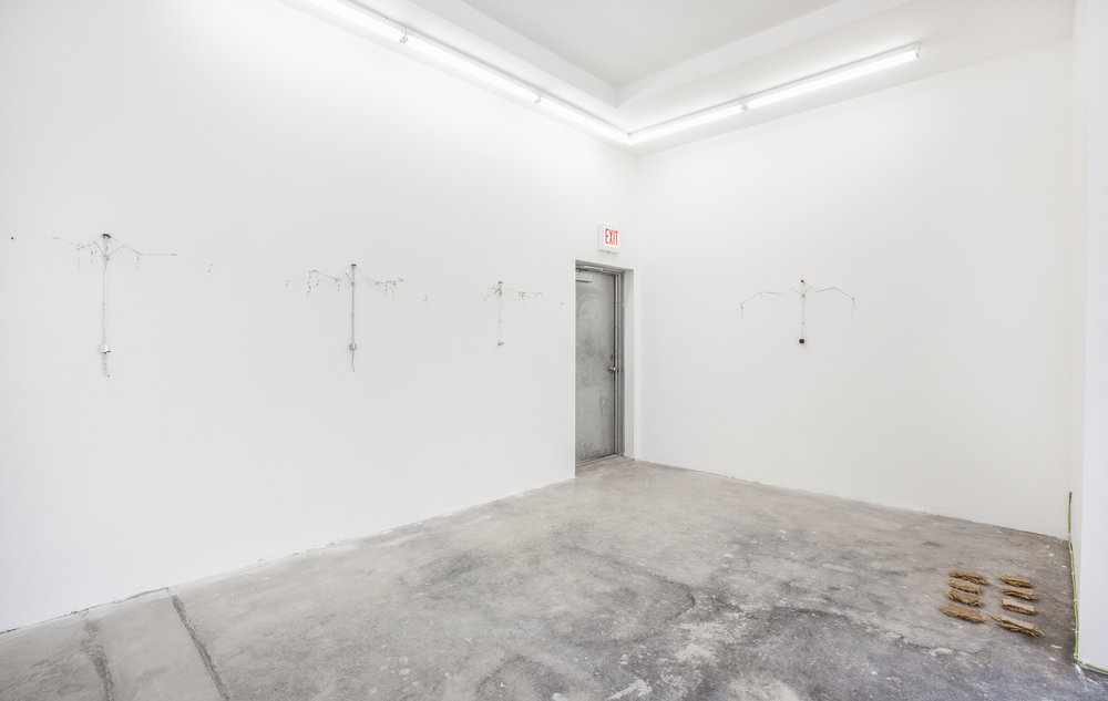 Installation view,  No Man's Land,  2018, Efrain Lopez Gallery, Chicago
