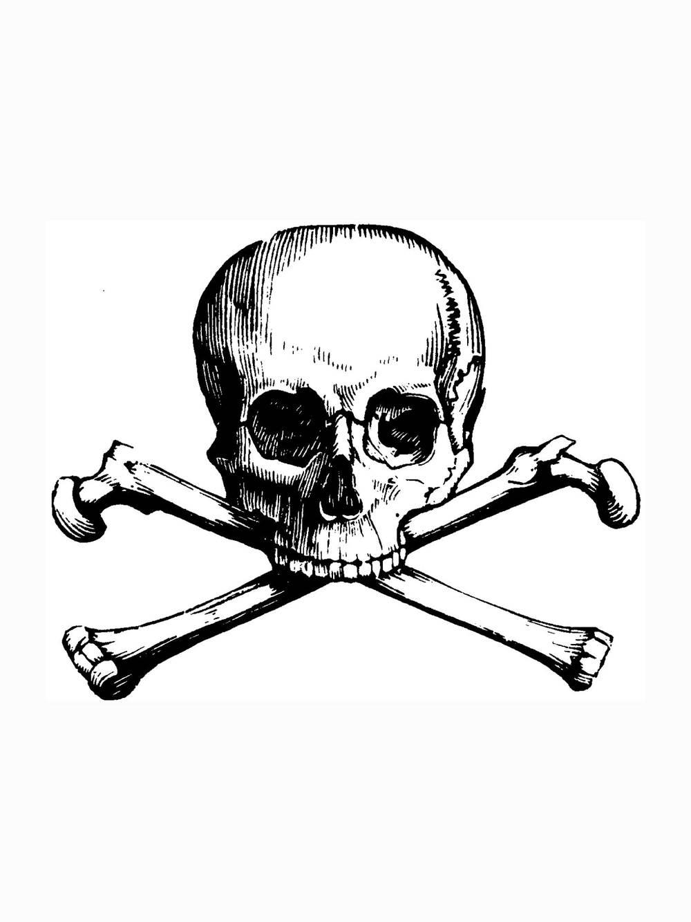 coloring-skull.jpg