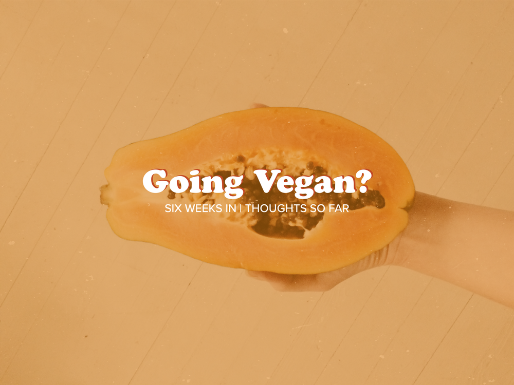 TCH_Blog_VEGAN.png