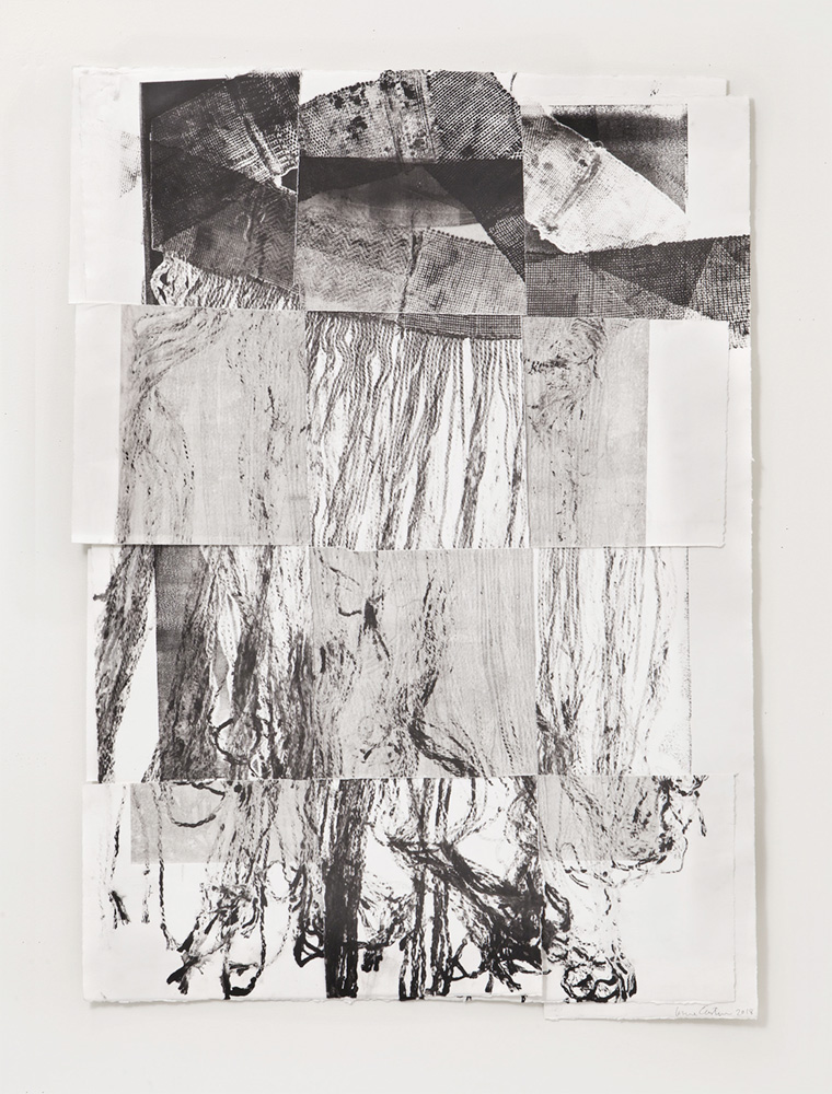 Untitled 5, Etching, 14 x 30 inches, 2018