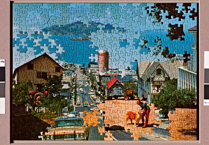 """Looking North: Bay Mashup With Teen and Dog  20"""" x 25"""", puzzle mounted to board, 2014"""