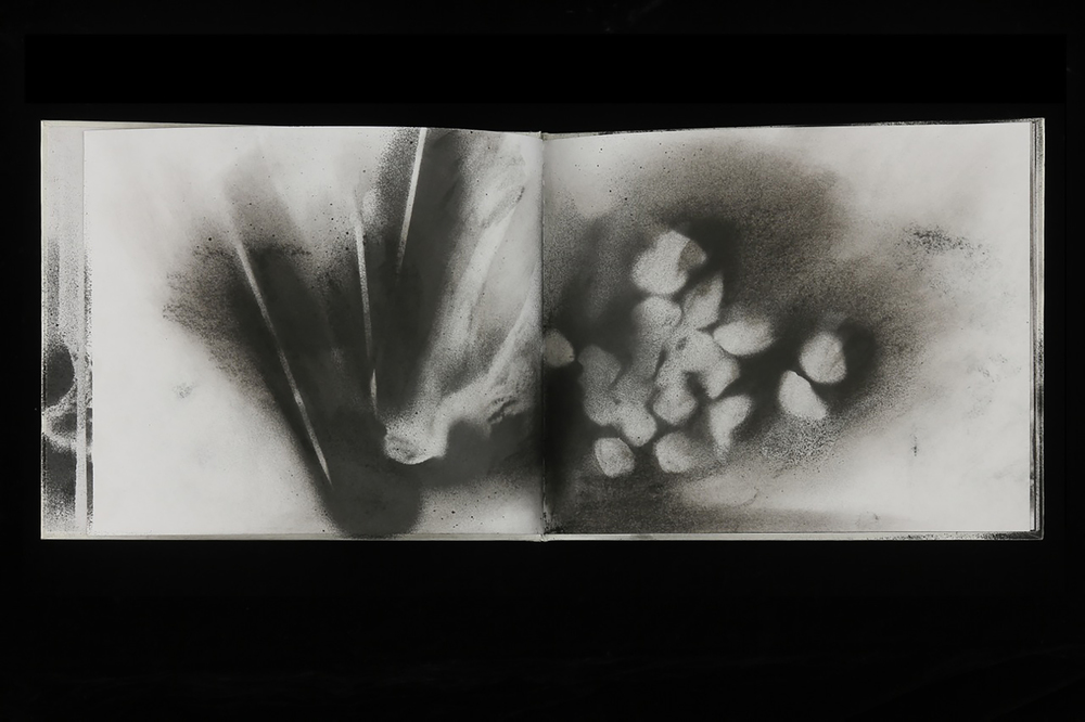 """Book 1: Part One  8"""" x 20"""", charcoal on paper,2013"""