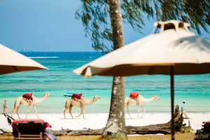 Image result for kenya diani beach