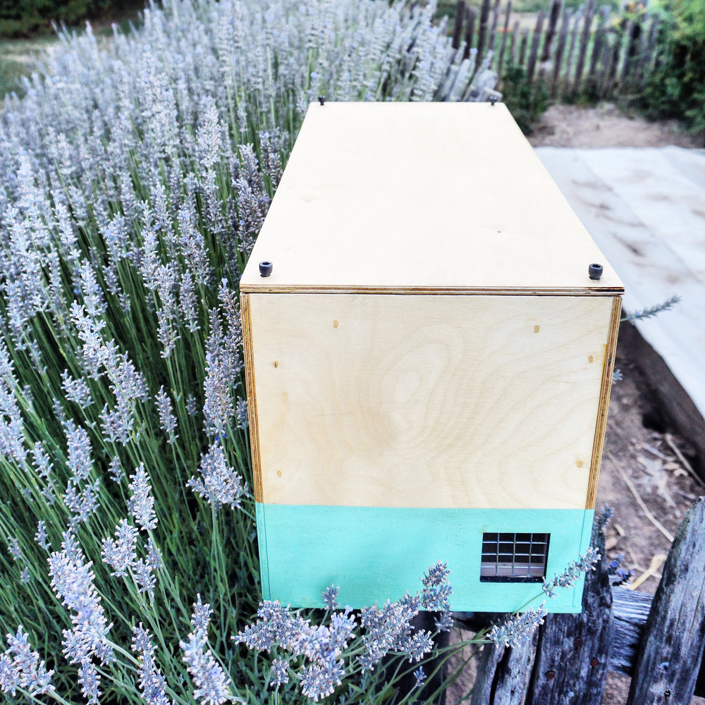 Modern Hive bait hives are perfect for urban beekeepers. They have a 40L capacity, easy to remove lid, and a clean design.