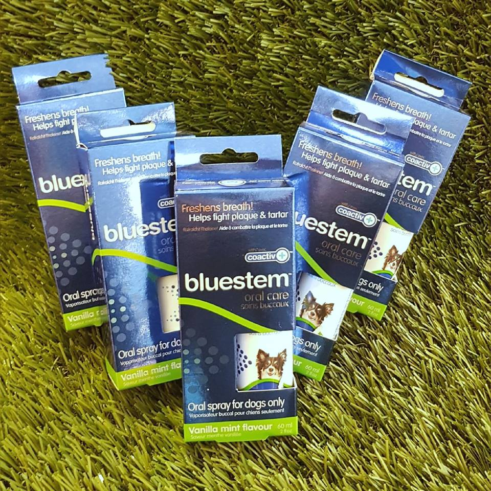 Buy 1 Bluestem Oral Care Spray and get the 2nd one 50% off!