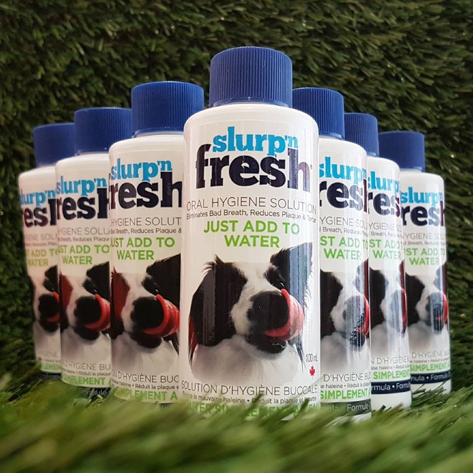 FREE Slurp 'n Fresh 100mL with Oral Care services