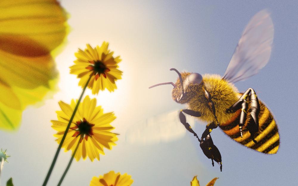 Bee!!! v2.jpg