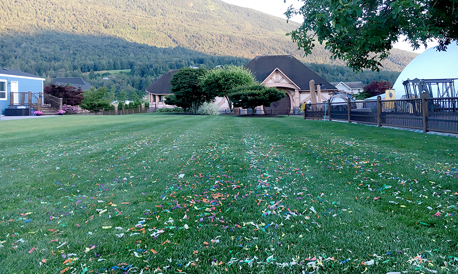 confetti on lawn.png