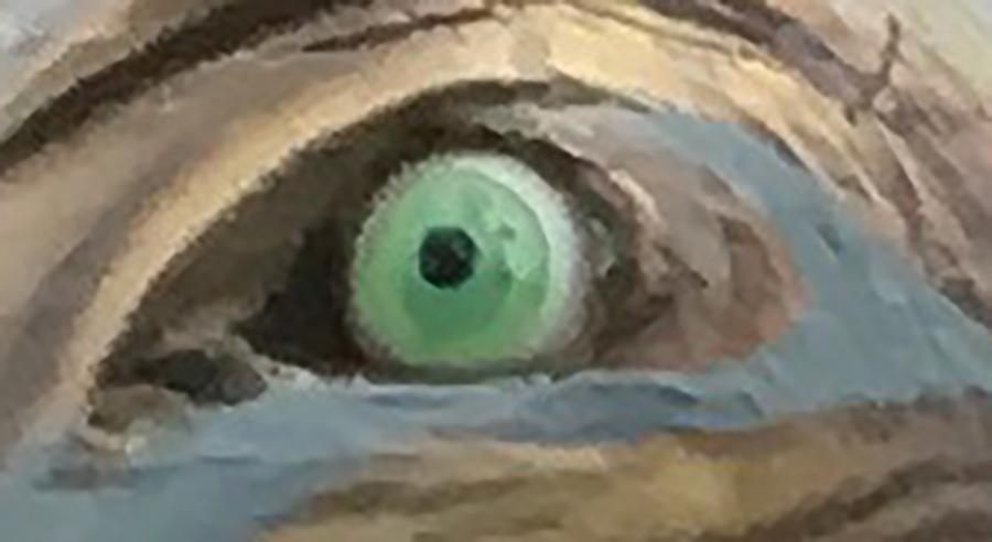 eye see.png