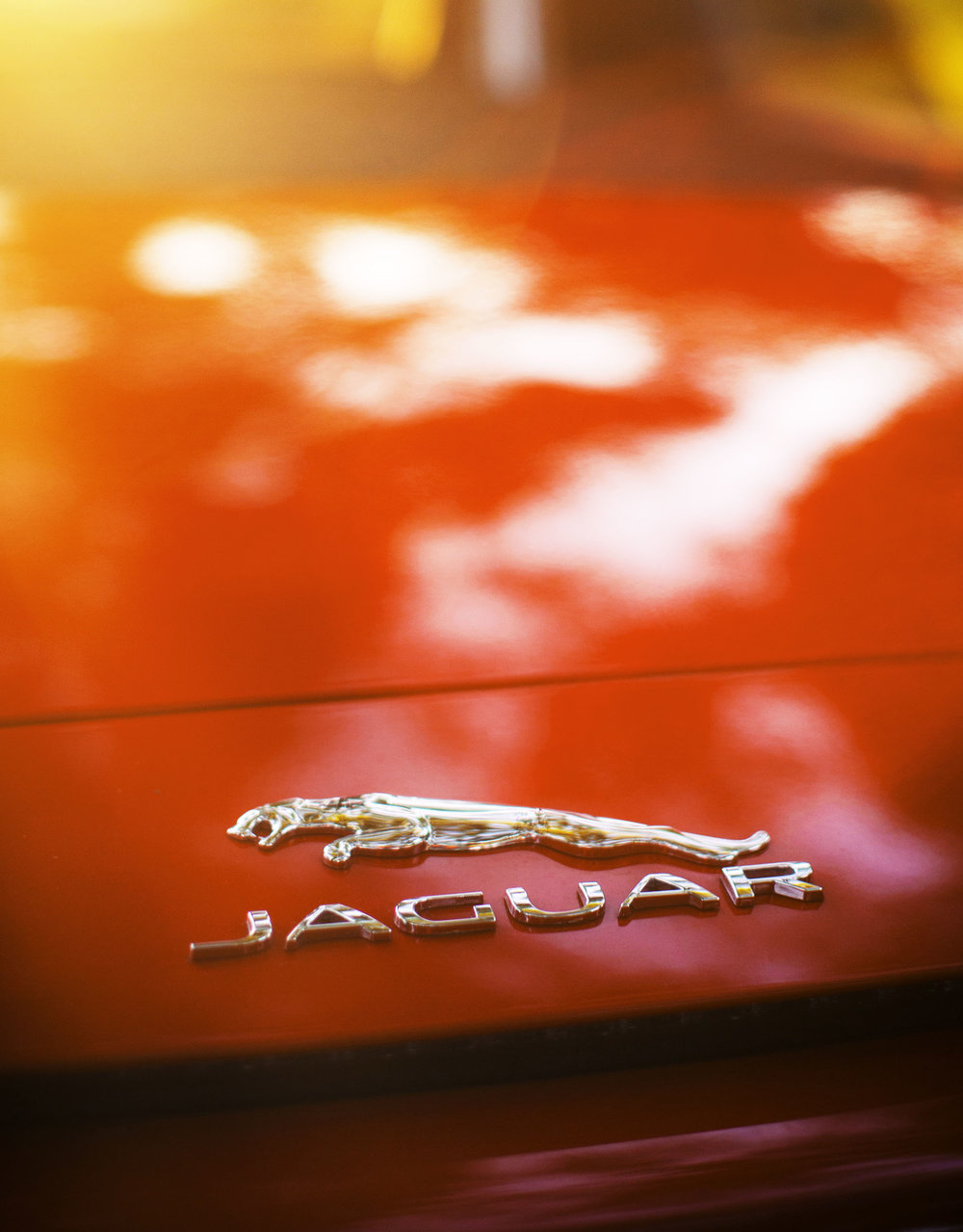Jaguar-F-Type-Badge.jpg