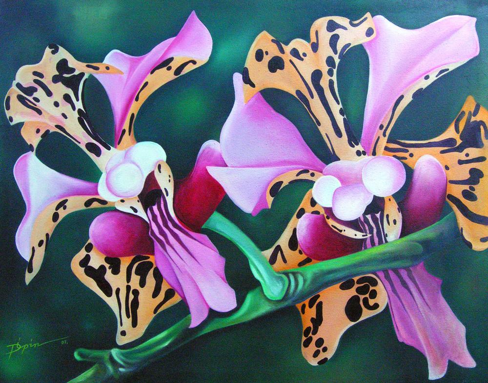 orchidias8.jpg