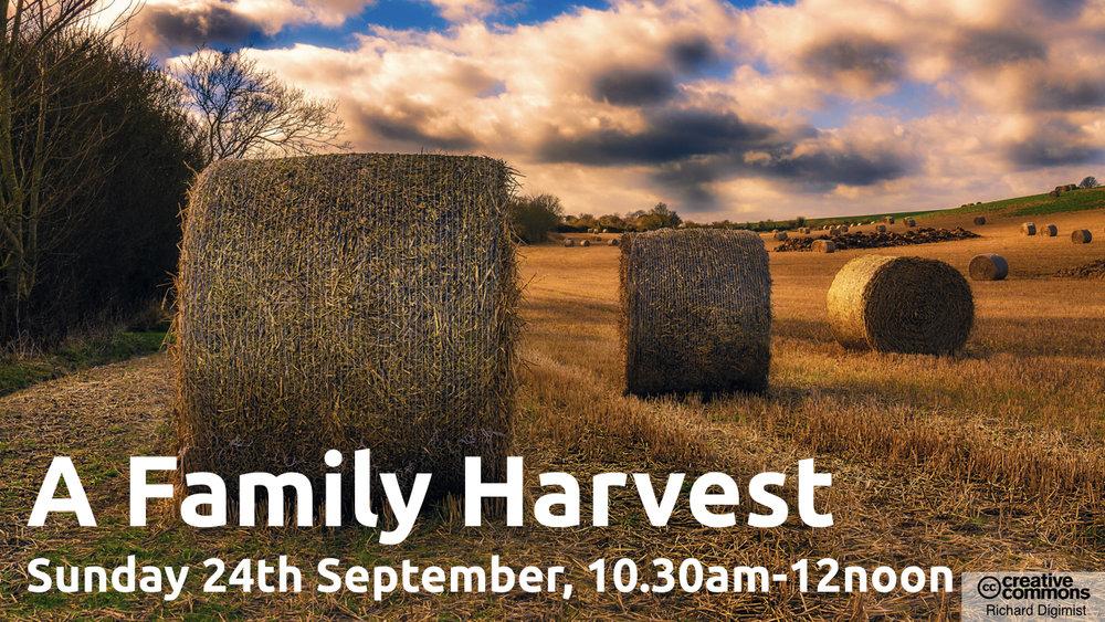 Harvest-bales-2017-1280 x 720.002.jpeg