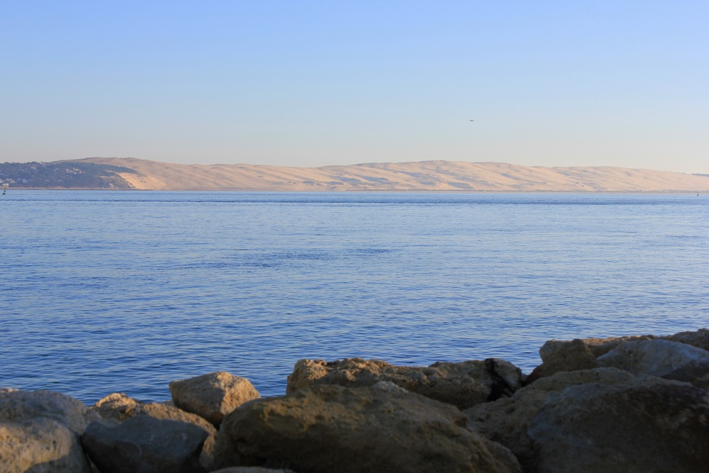 paysage bassin (1).JPG