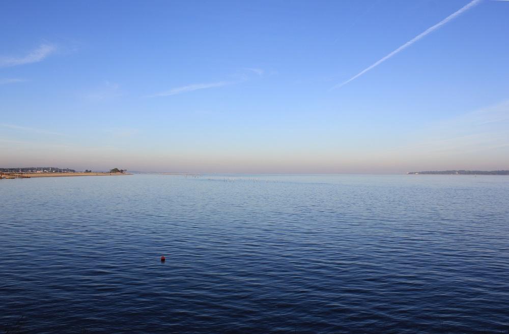 paysage bassin (6).JPG