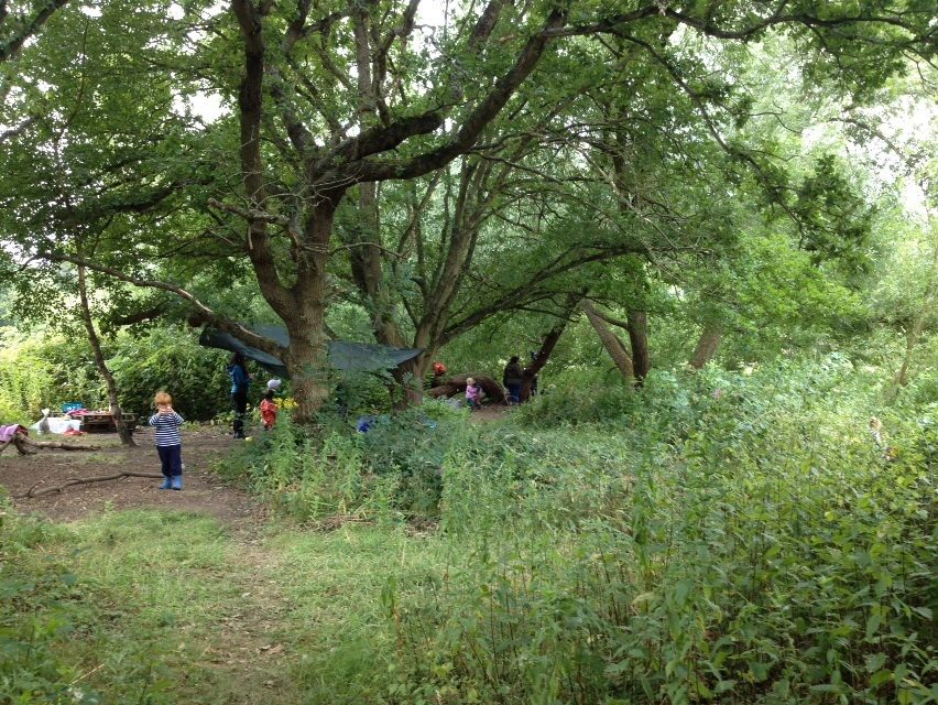lff-summercamp-wk2-site.jpg