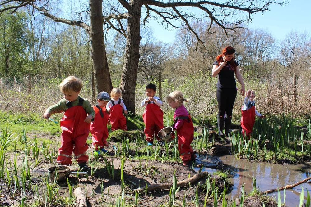 Little Forest Folk - Great childcare in the great outdoors