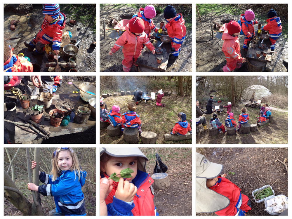 Sensory fun in the forest