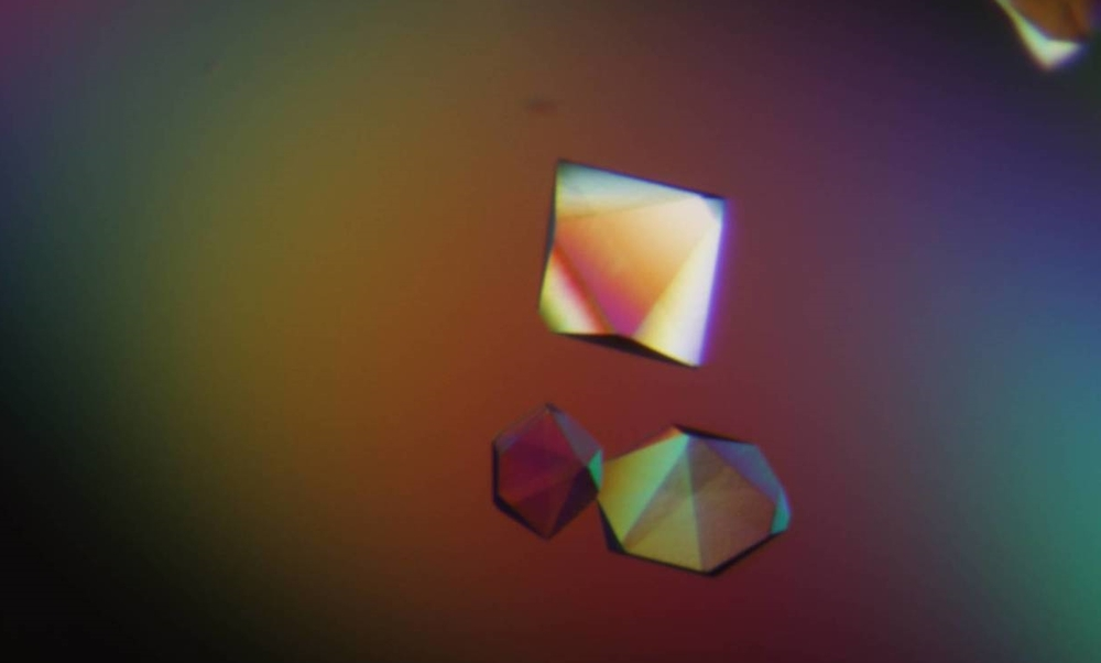 XPERT Crystallography de novo structures