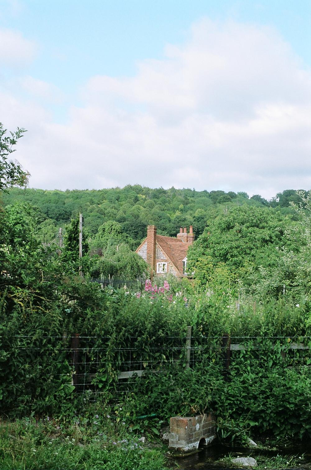 Hambledon, 2012