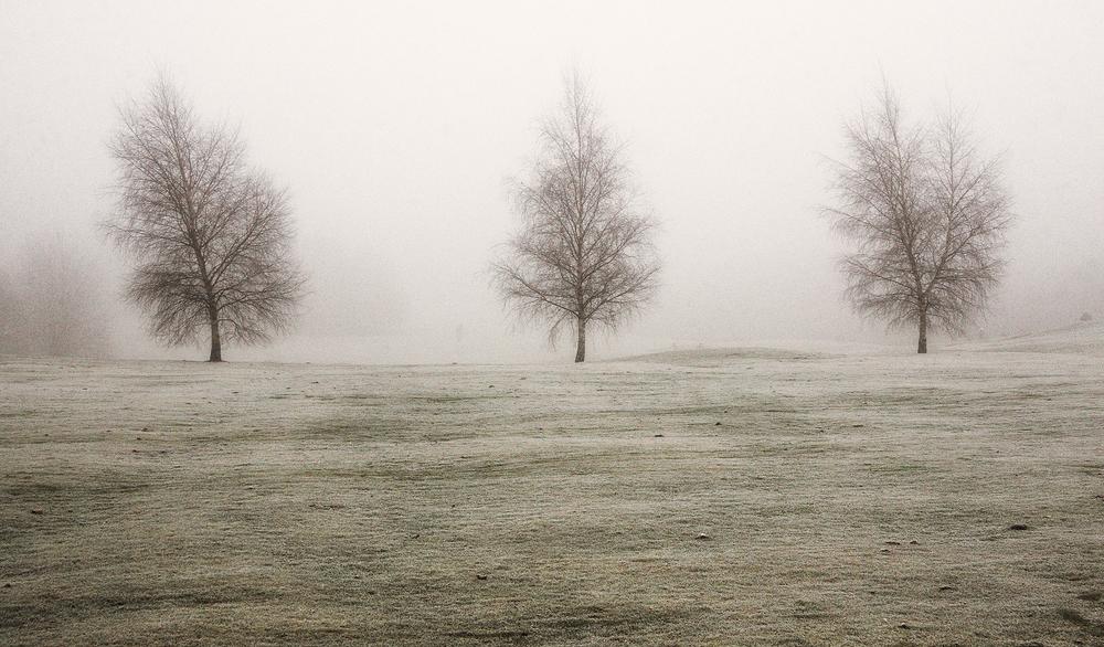 Allestree Park, Derbyshire #3