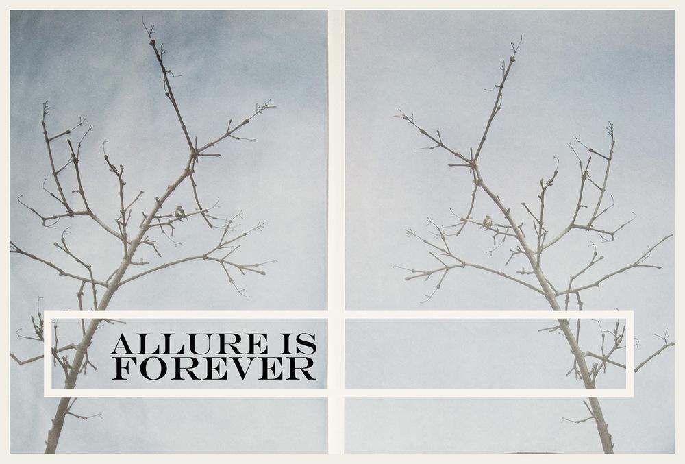 Allure is Forever for DRESSLAB