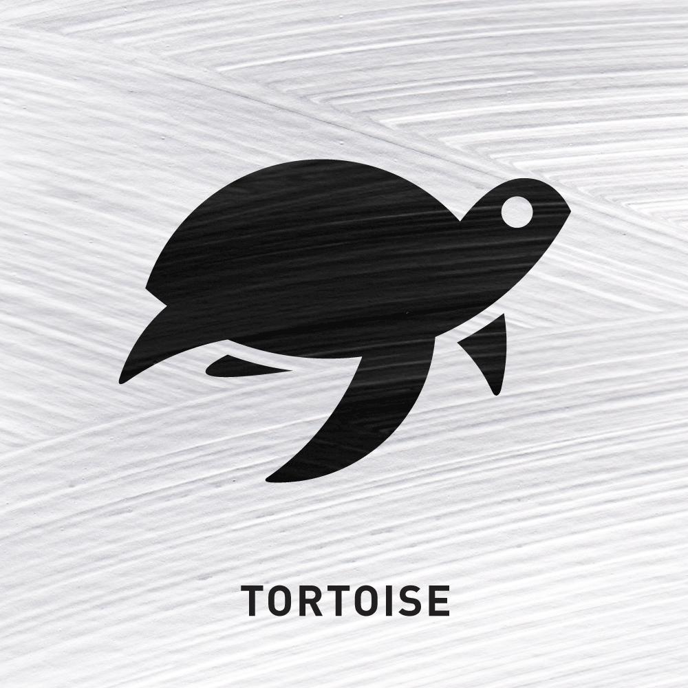 Tortoise Invulnerability