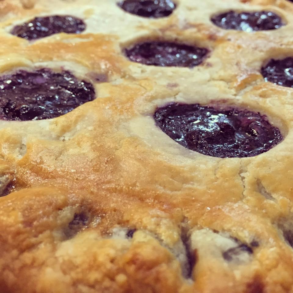 blueberrycloseup.jpg