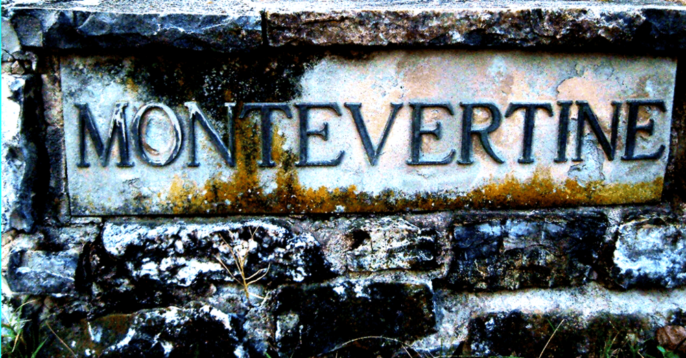 tenuta-montevertine