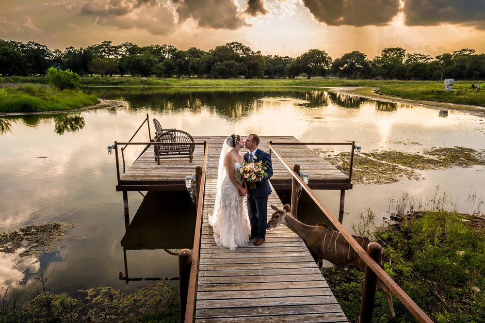 Branded T Ranch Wedding in Kendalia, TX