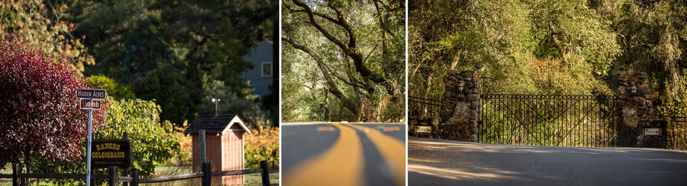 Healdsburg_California_Wedding_Photographer_ 1.jpg