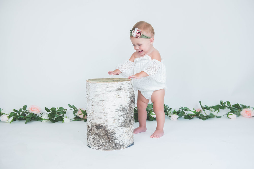 birch tree stump first birthday photos