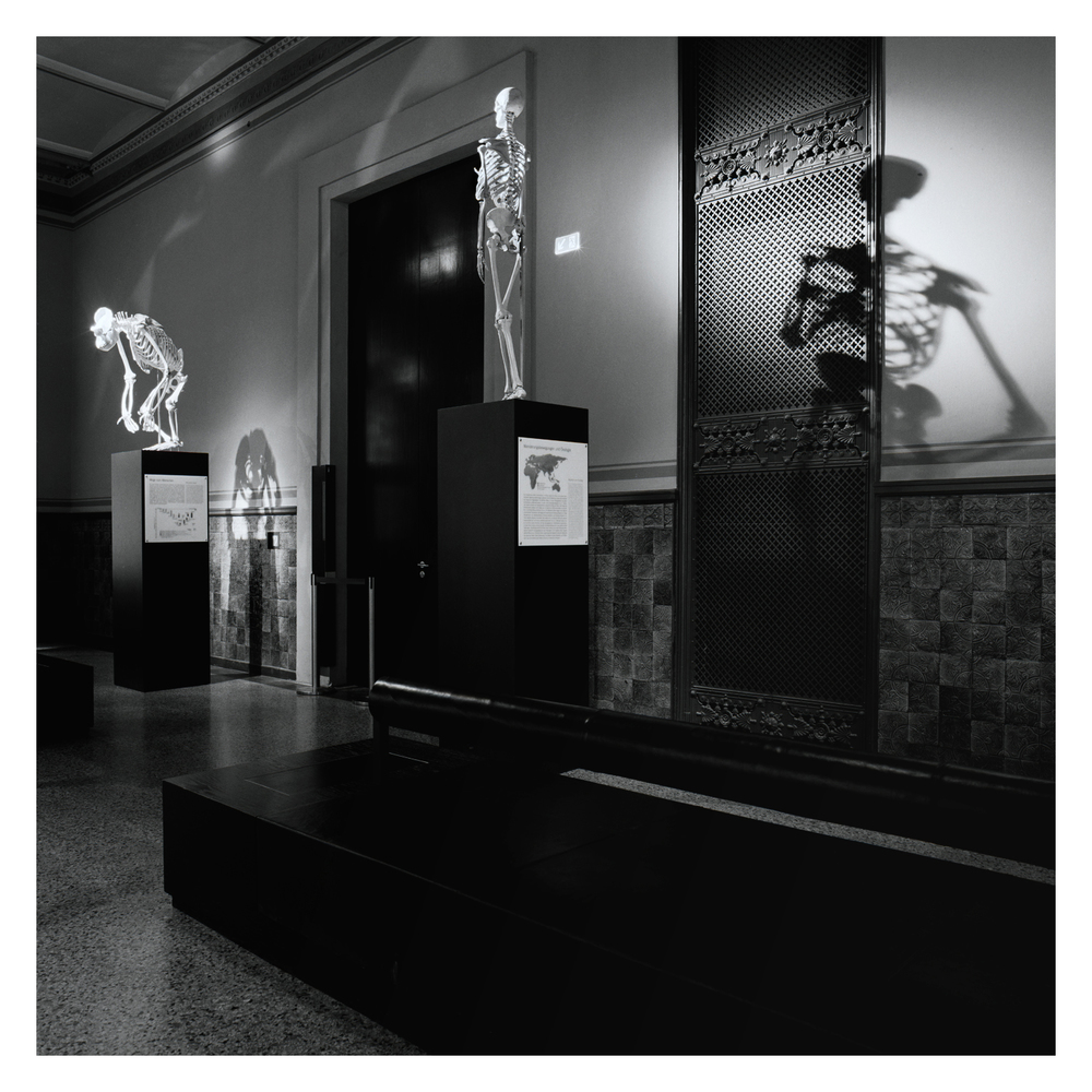 naturkunde_museum_berlin_036.jpg
