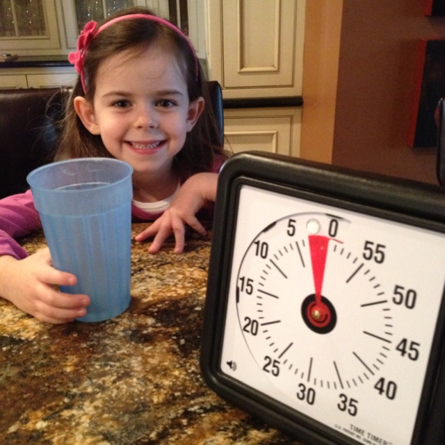 """The  8"""" Timer Timer  is a great tool to help kids with time issues, even kids with deeper underlying problems."""