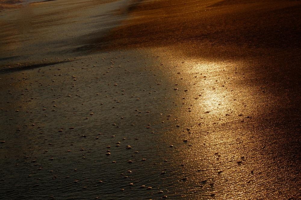 Lanka sands - Version 2.jpg
