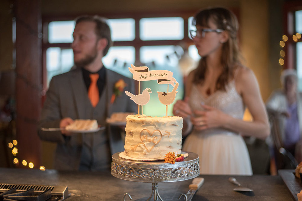 cake-canajoharie-ny-wedding-ym-photography