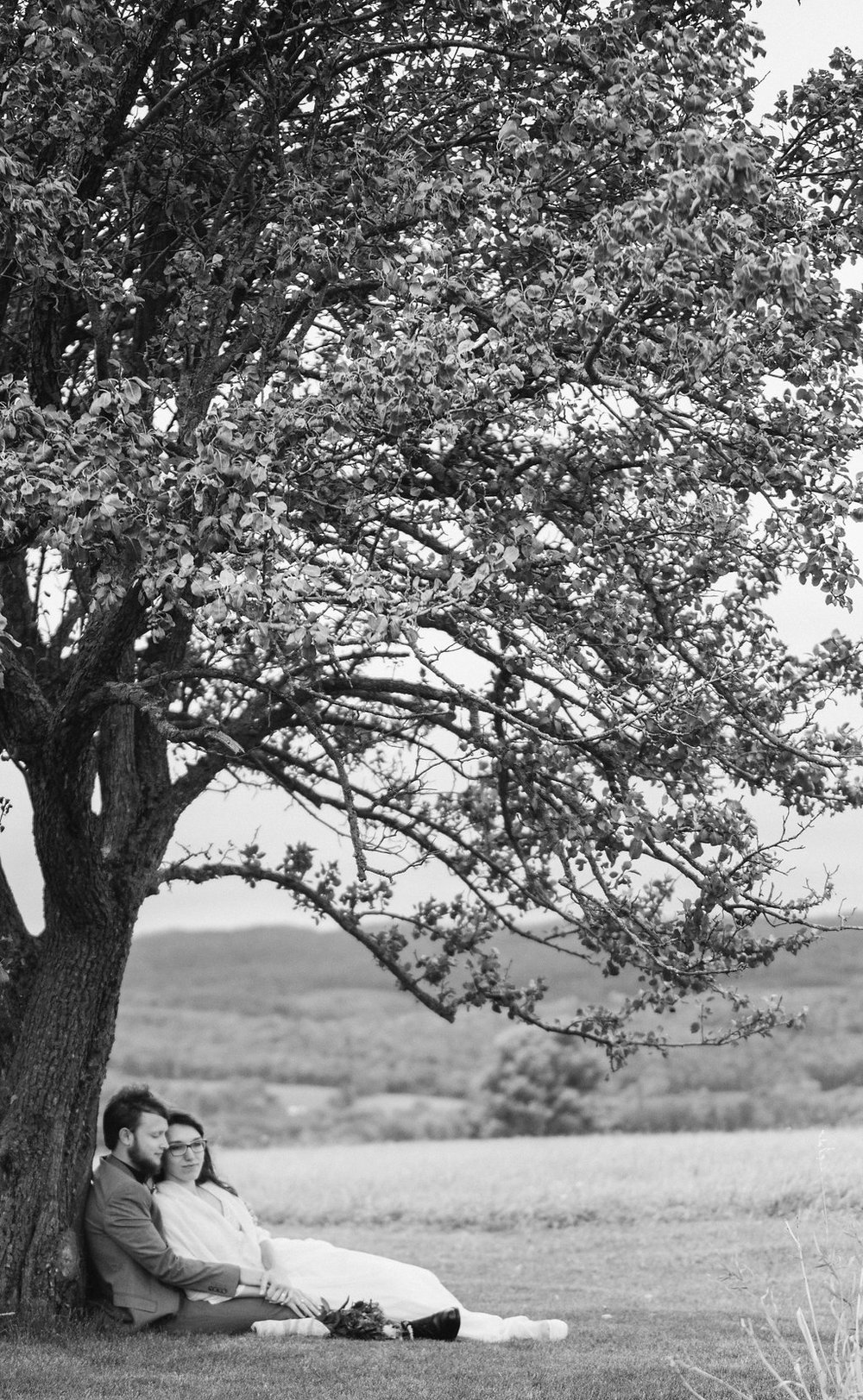 beautilful-photo-B&W-tree-canajoharie-ny-wedding-ym-photography
