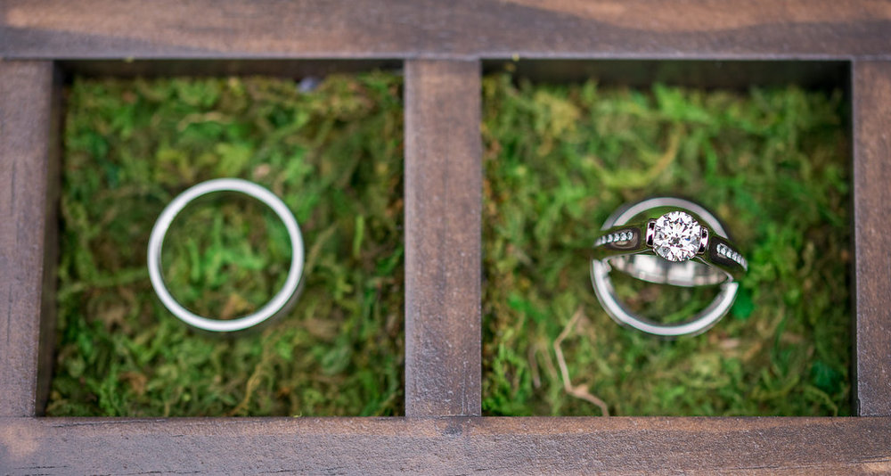 wedding-rings-saratoga-springs-wedding-national-museum-of-dance-ym-photography