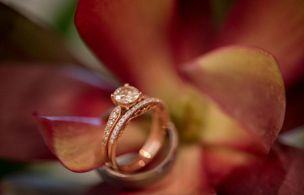 wedding-bands-sagamore-resort-lake-george-ny-wedding-ym-photography