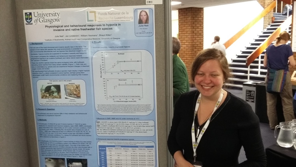 Ph.D. student Julie Nati is caught mid-blink as she presents here poster on how invasive bullheads and native stone loaches may differ in their hypoxia tolerance.