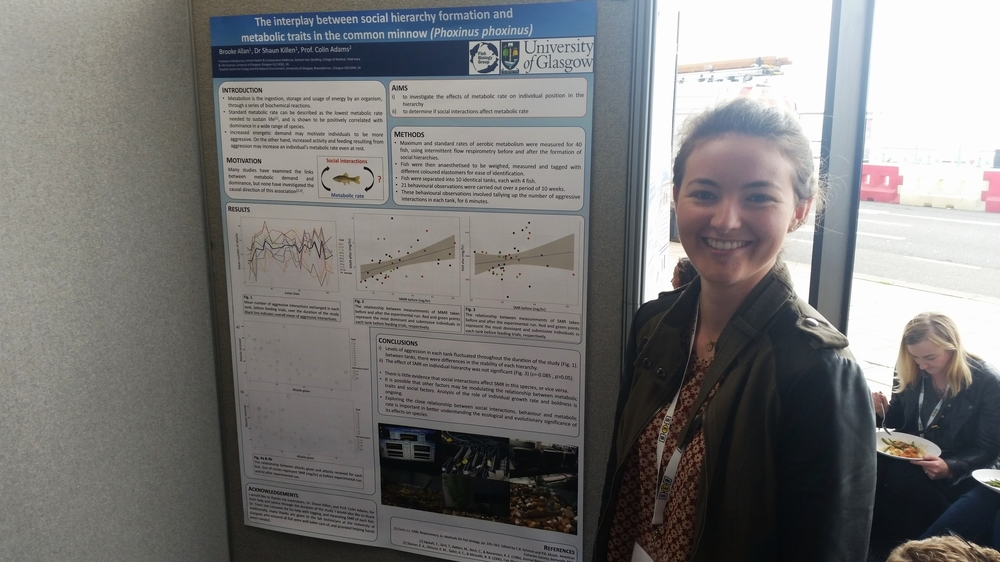 Master's student Brooke Allan presents her poster on social interactions and metabolic traits in minnows.