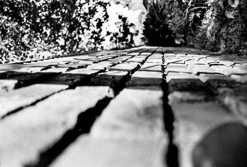 Film Illusionscape