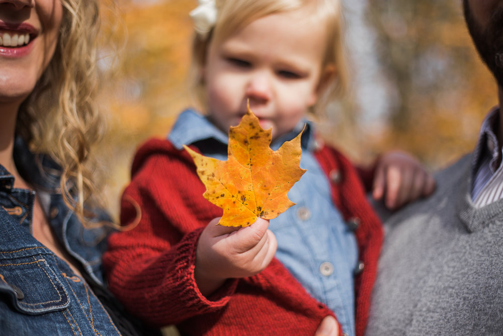 Bell Family, Fall Portraits