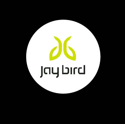 jaybird2.jpg