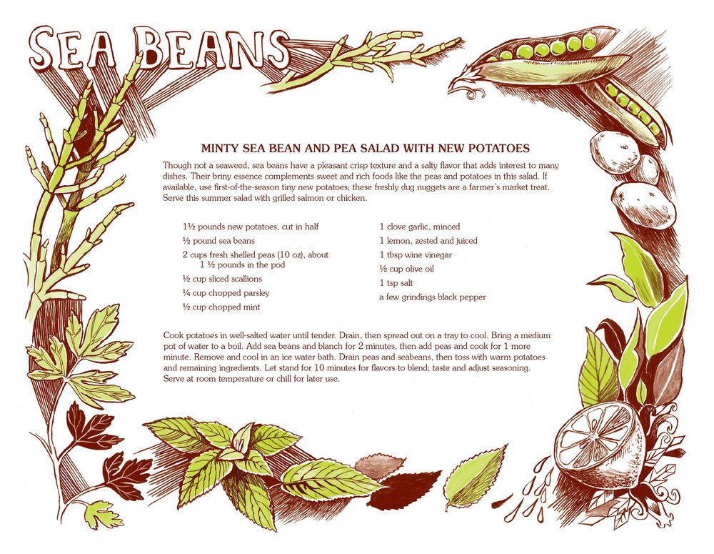 Foraged-and-Found-Sea-Bean-Salad.jpg