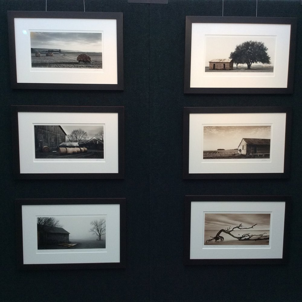Six of my 1:1 contact prints, silver gelatin handprinted photographs, hung together at an art show.