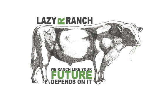 Lazy R Ranch