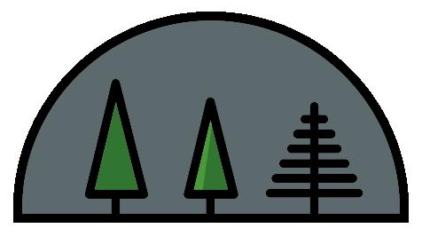 austin-saylor-tree-exploration