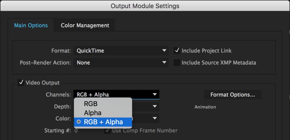 austin-saylor-rgb+alpha